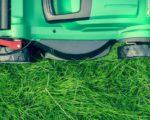 Domelia, kosenie, trávnik